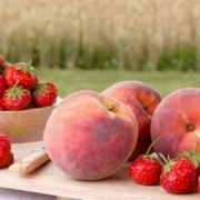 NicQuid Strawberry Fuzz