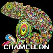 JVapes Chameleon Flavor