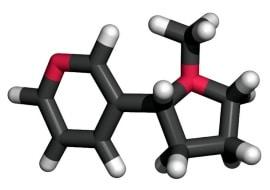 Nicotine Salts vs. Free Base Nicotine